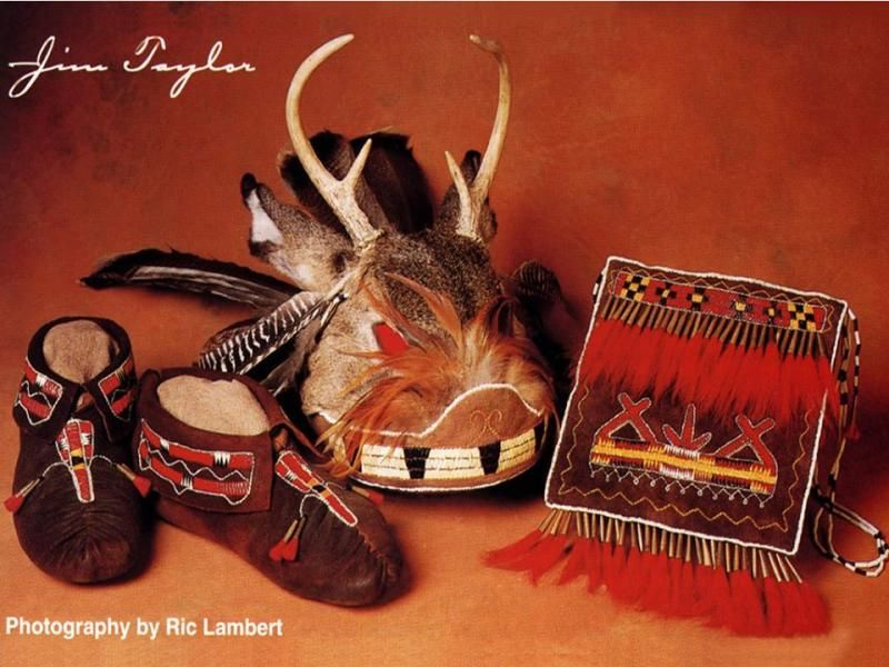 Image of Quilled  Moccasins, Gustowah and Bag,